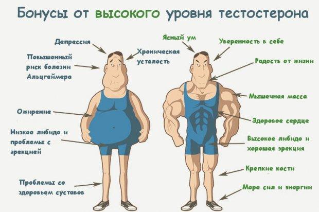 симптомы признаки и психология мужского климакса