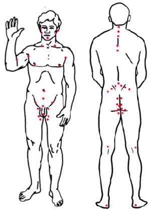 эрогенные зоны у мужчины