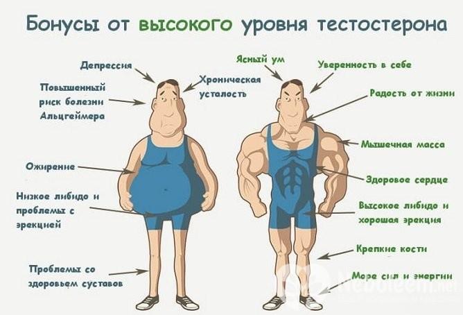 симптомы и признаки низкого тестостерона у мужчин